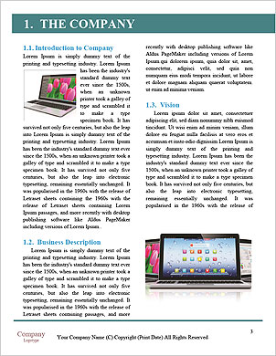 0000098093 Word Template - Page 3