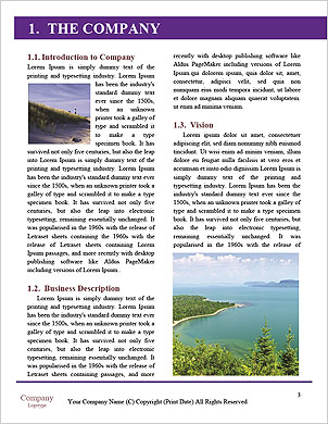 0000098099 Word Template - Page 3