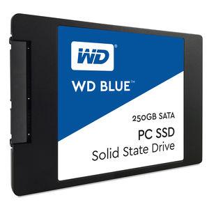 WDS250G1B0A