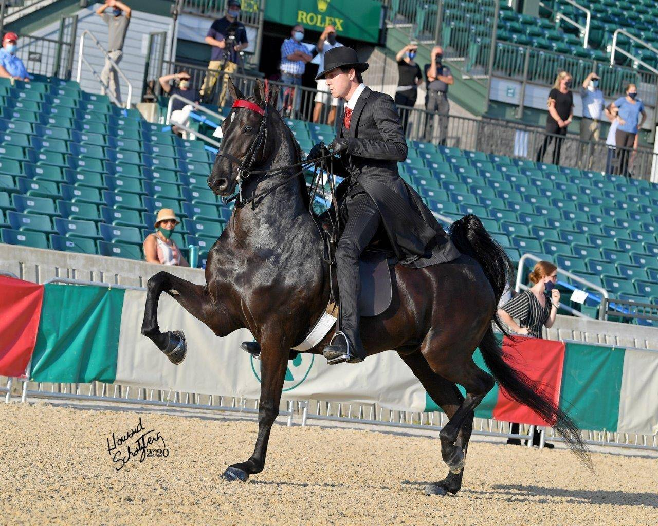 Victor & Kalarama's Handsome Does 2020 Lexington Jr. League Junior 3-Gaited Park Horse