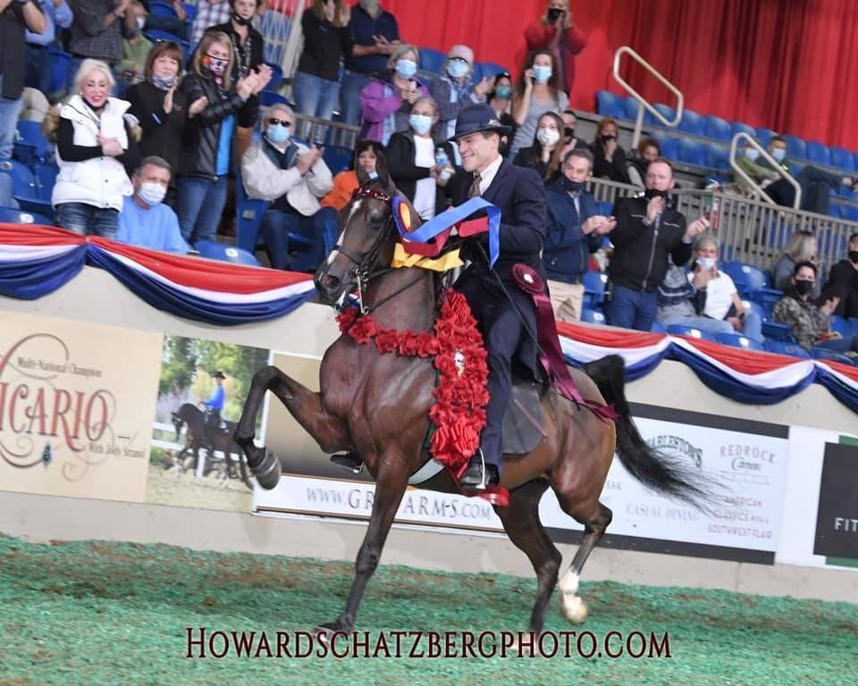 John & Lake Afire 2020 U.S. National Champion Half Arabian English Junior Horse