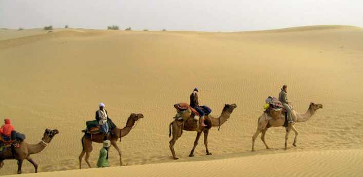 Desert camel safari in rajasthan