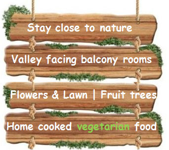 Stay close to nature | Valley facing balcony rooms | home cooked vegetarian food