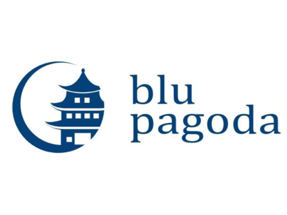 Blu Pagoda LLC Screenshot