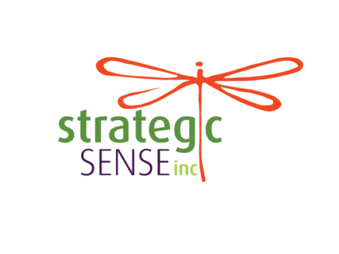 Strategic Sense, Inc. Screenshot