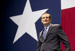 U.S. Sen. Ted Cruz on the Republican stage election night Nov. 4, 2014.