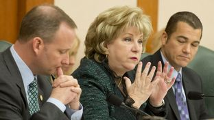 Sen. Jane Nelson, R-Flower Mound, wraps up the Sunset Advisory Commission hearing on Jan. 14, 2015.