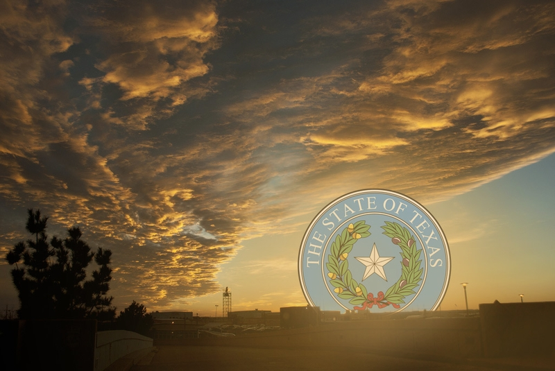 an analysis of the texas sunset advisory commission Sunset advisory commission  commission of texas filings and orders • texas appointment system (tas)—enables users to view and print information about.