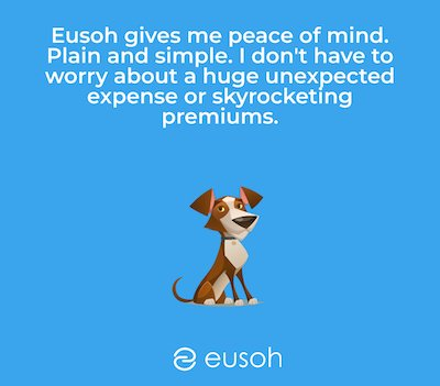 Quote of positive review written on a Eusoh graphic