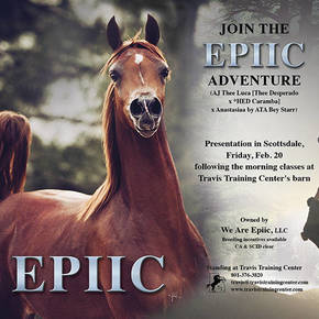 Join the EPIIC Adventure
