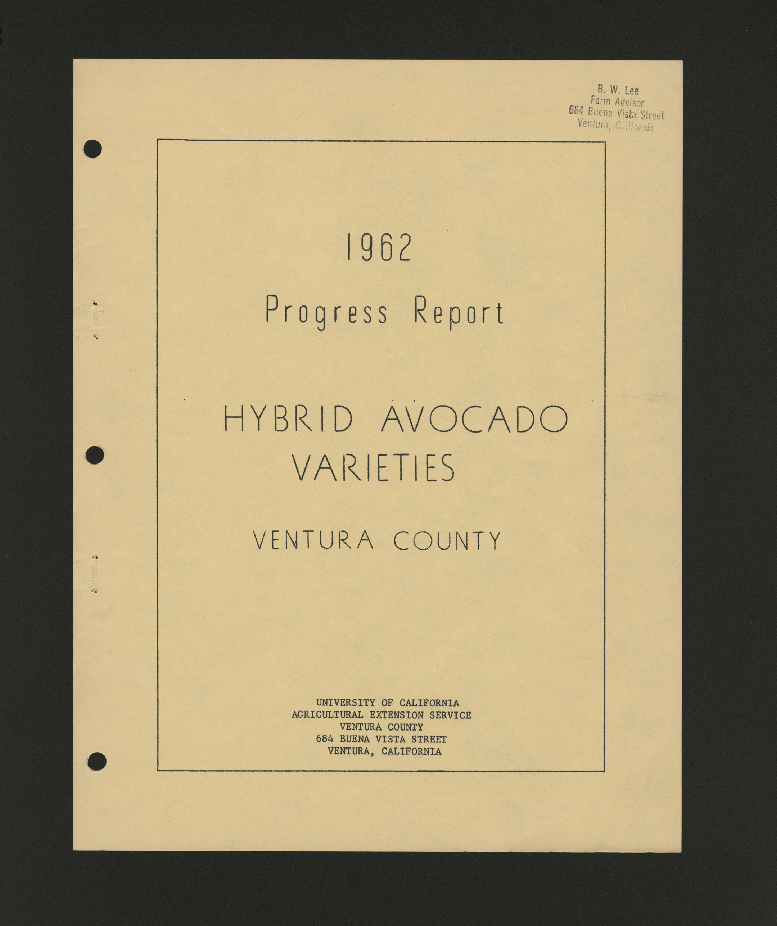 1962 Progress Report Hybrid Avocado Varieties Ventura County