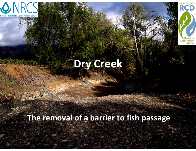 Dry Creek - The Removal of a Barrier to Fish Passage and Restoration of a Stream in Napa County, California