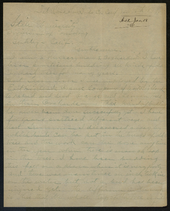 Letter to the State University (Division of Pomology, Berkeley, California) from A. J. Drothzen