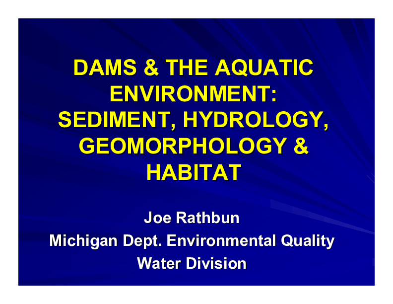 Dams and the Aquatic Environment: Sediment, Hydrology, Geomorphology and Habitat