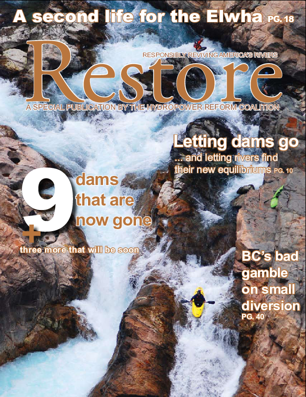 Restore : responsibly reviving America's rivers