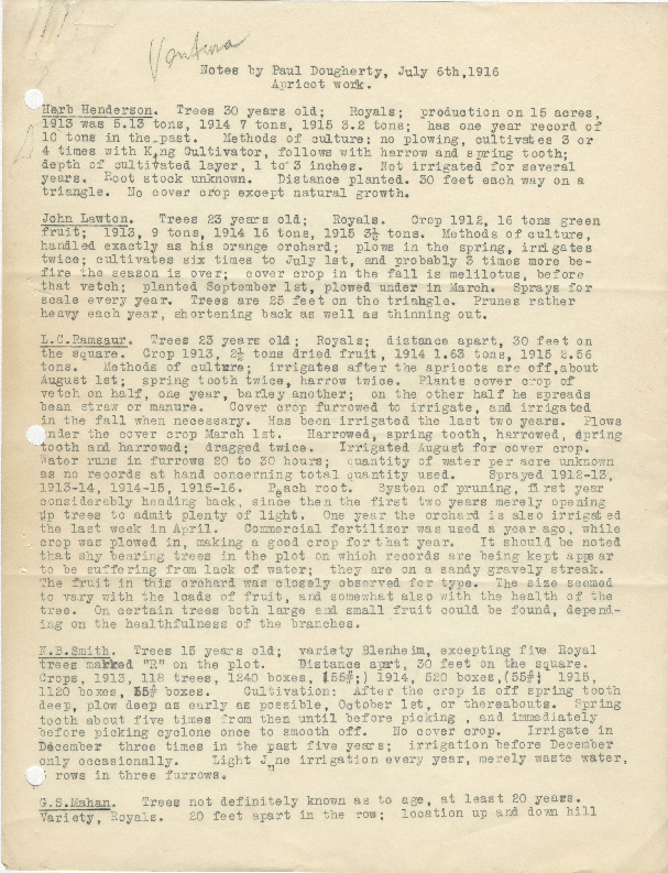 Notes by Paul Dougherty, July 6th, 1916 Apricot Work