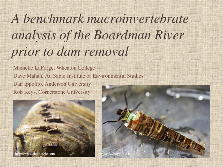 A Benchmark Macroinvertebrate Analysis of the Boardman River Prior to Dam Removal