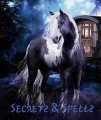 secrets of the gypsy