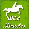 ☆ wild miracles ☆