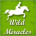 ☆ wild miracles ☆