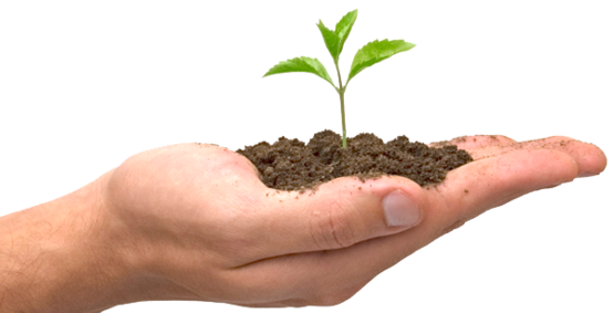 Sustentabilidade Reutilizar, Reduzir e Reciclar.