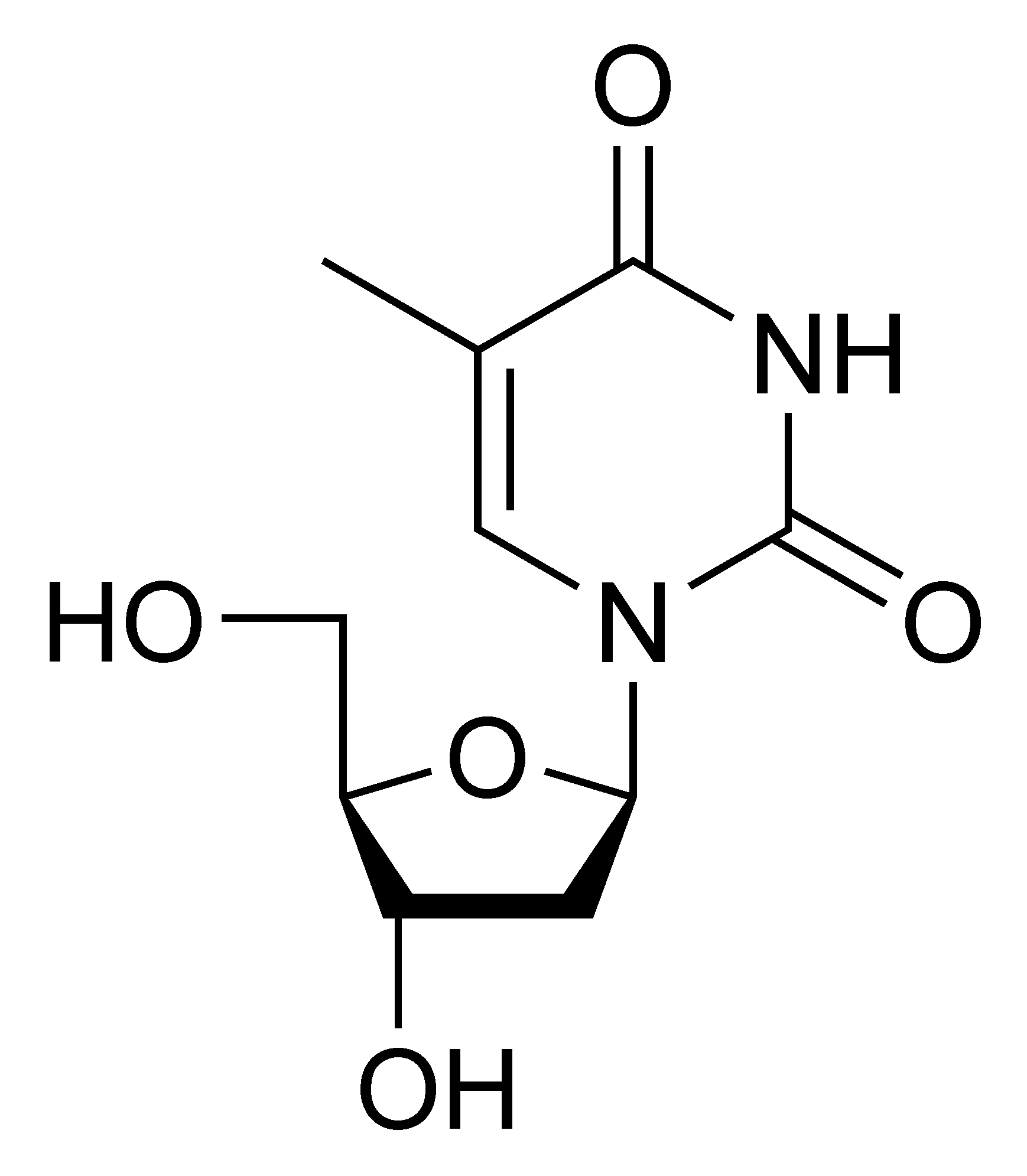 Chemical structure of thymidine