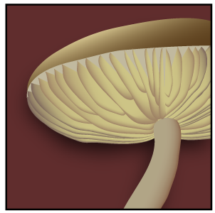 Gills icon.png