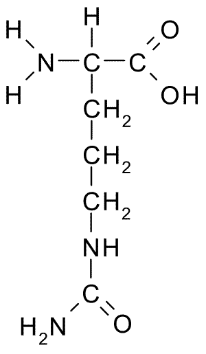 Chemical structure of Citrulline