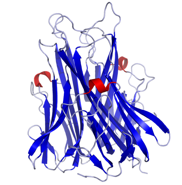 TNFa Crystal Structure.rsh.png