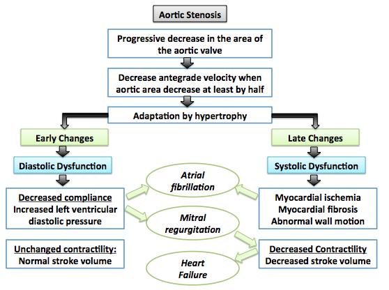 Pathophysiology of aortic stenosis