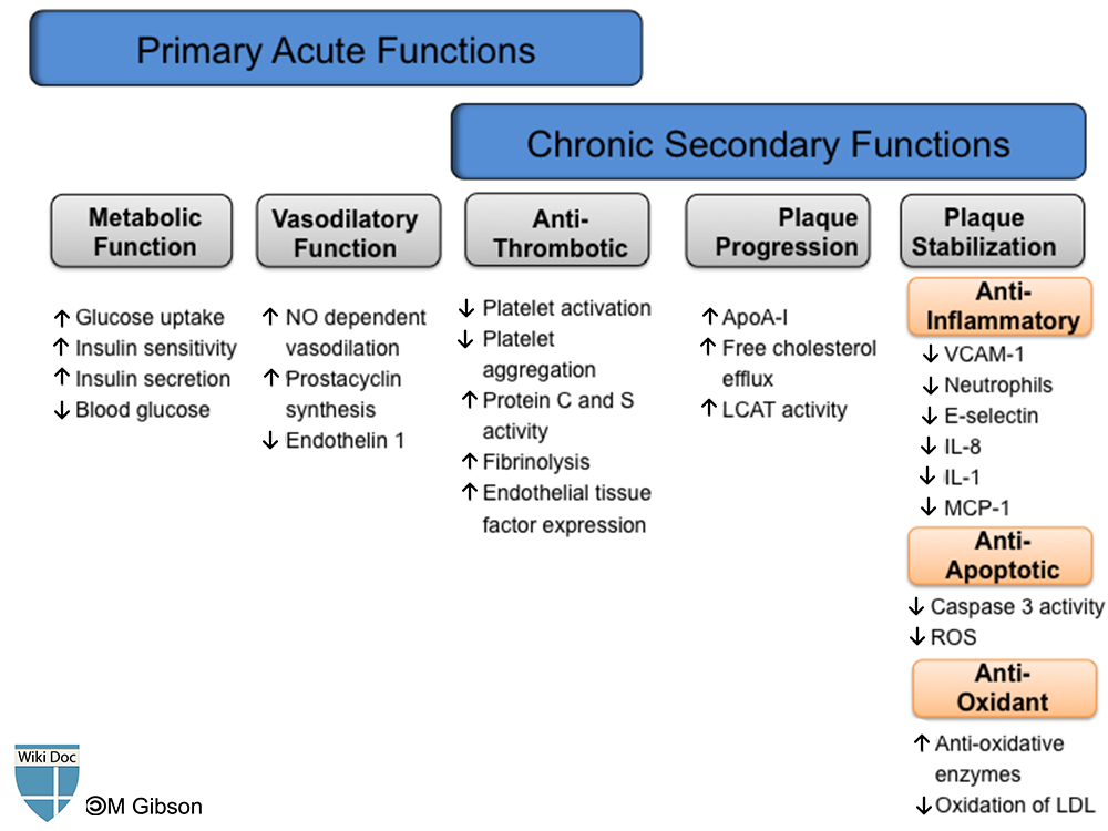 The physiologic functions of HDL in an acute and chronic setting