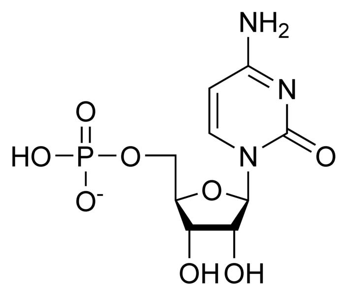 Chemical structure of cytidine monophosphate