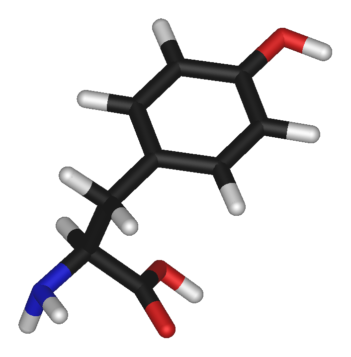 3D stick model of tyrosine molecule