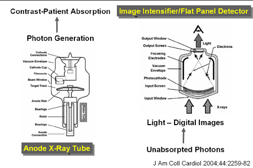 X Ray Radiation >> Radiation safety - wikidoc