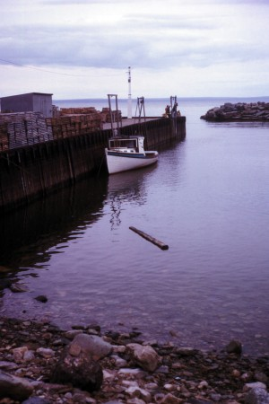 Bay of Fundy High Tide.jpg