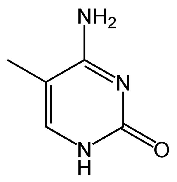 Chemical structure of 5-methylcytosine