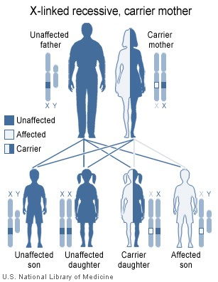 X-linked recessive inheritance