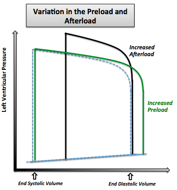The variation in the pressure volume loop in case of increased preload and in the case of increased afterload. Note that the normal pressure volume diagram is in dotted line.