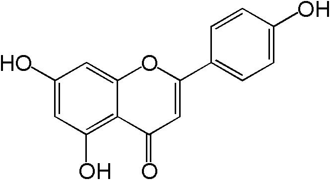 polyphenol antioxidant