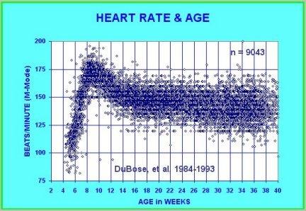Average Heart Rates Chart Frodofullring