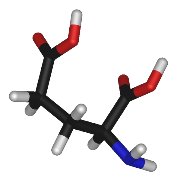 A representation of the structure of L-glutamic acid
