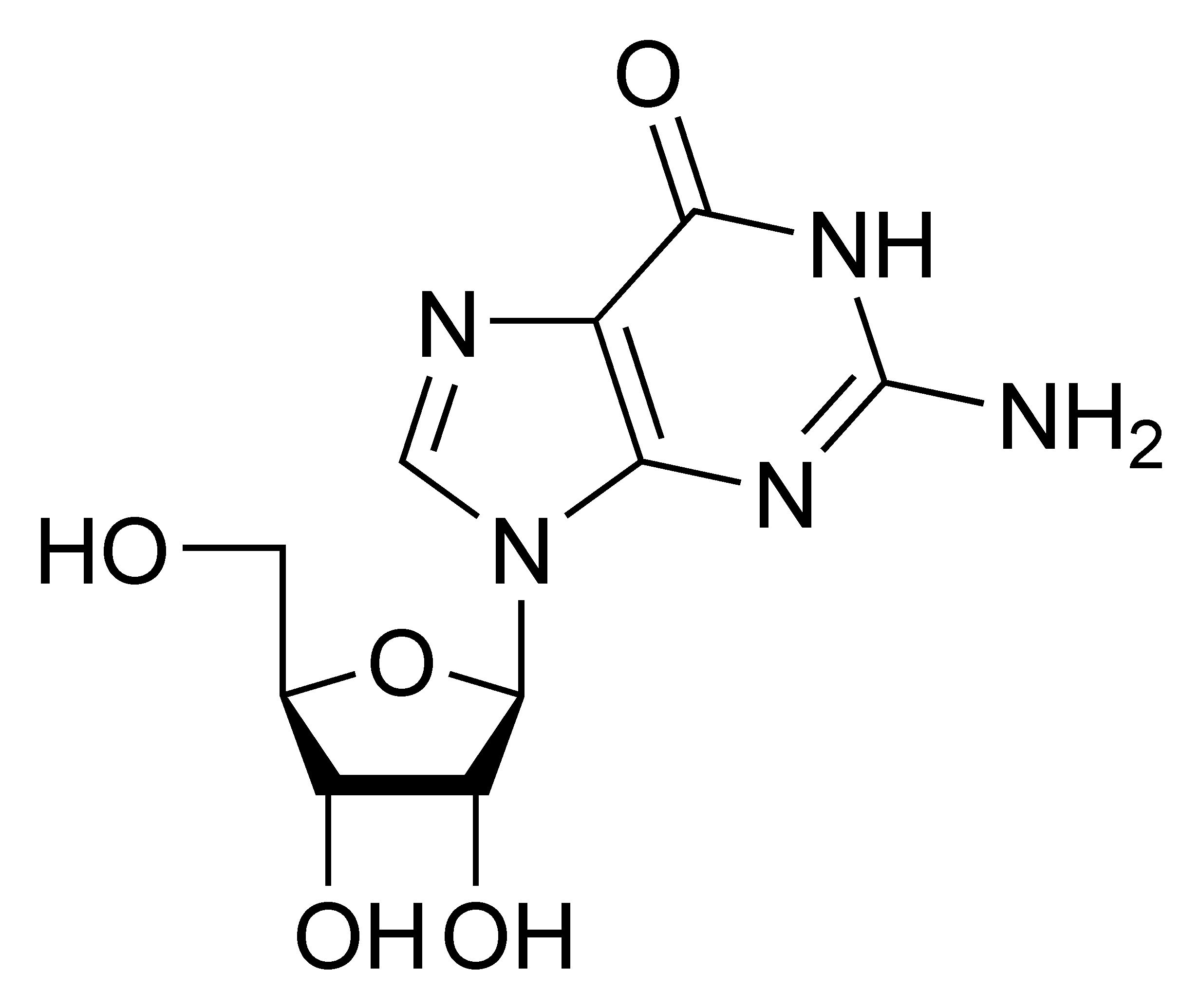 Chemical structure of guanosine