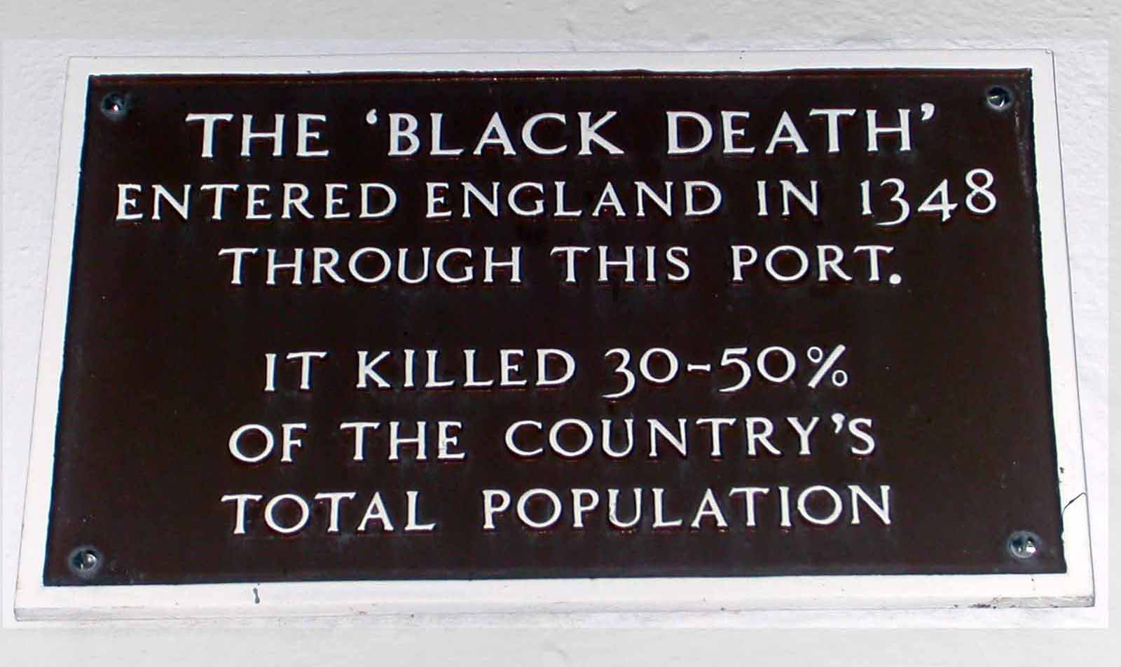 bubonic plague essay black death wikidoc plague migration