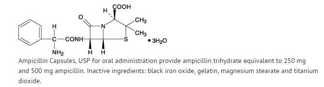 calcium carbonate in hydrochloric acid reaction