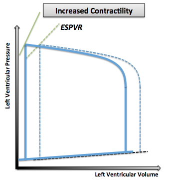 Pressure- Volume loop showing a steeper ESPVR that shifts to the left as inotropy (contractility) increases. Note that the normal pressure volume diagram is in dotted line.