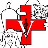 Ocean Isle Veterinary Hospital