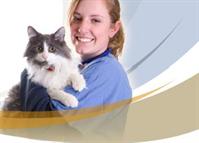 Neuse River Veterinary Hospital