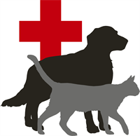 South Willow Animal Hospital