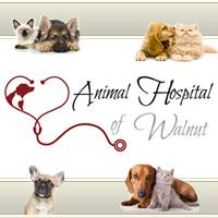 Animal Hospital Of Walnut