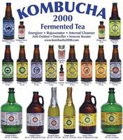 Kombucha2000